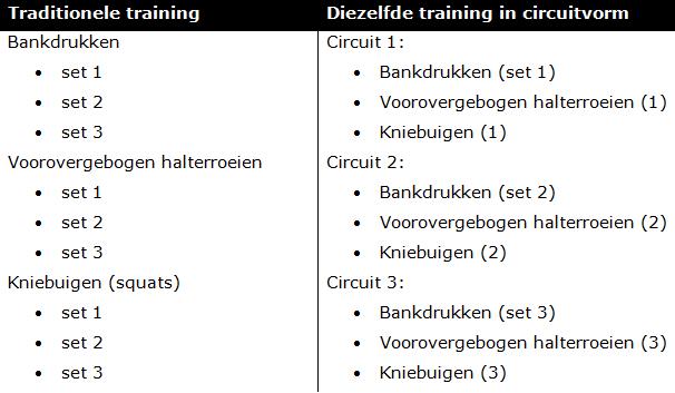 Circuit training: een inleiding, met voorbeelden - Fitguide nl